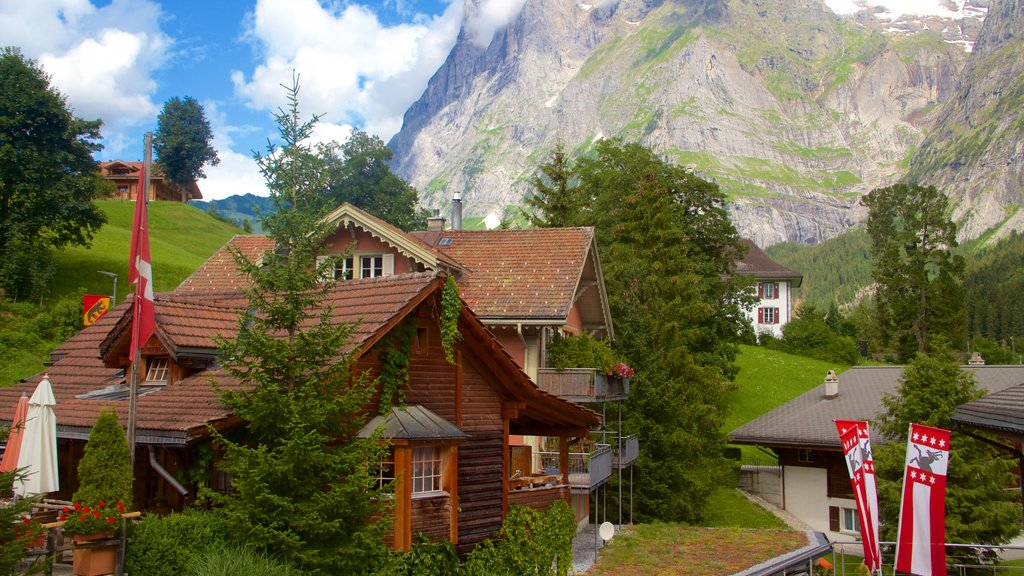 Grindelwald which includes a house and mountains