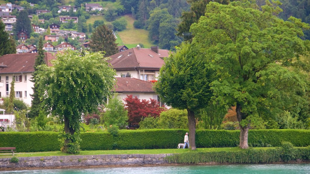 Schadaupark which includes a garden and a small town or village