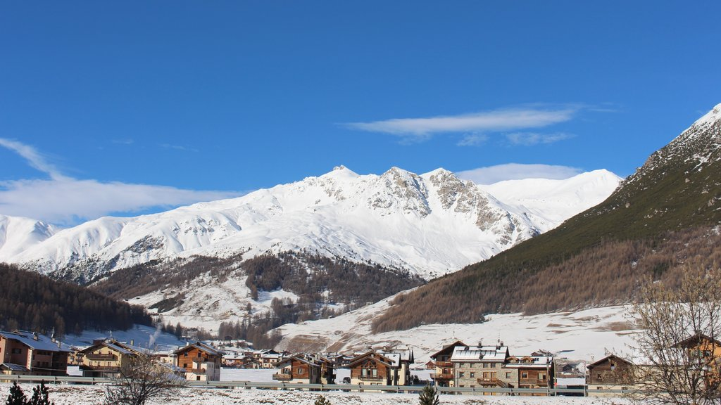 Livigno showing snow, mountains and a small town or village