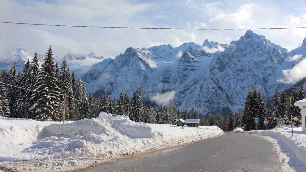 Cortina d\'Ampezzo featuring snow, forest scenes and mountains