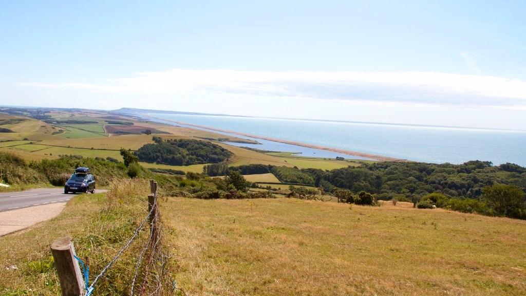 Dorset que incluye vistas generales de la costa, turismo y escenas tranquilas