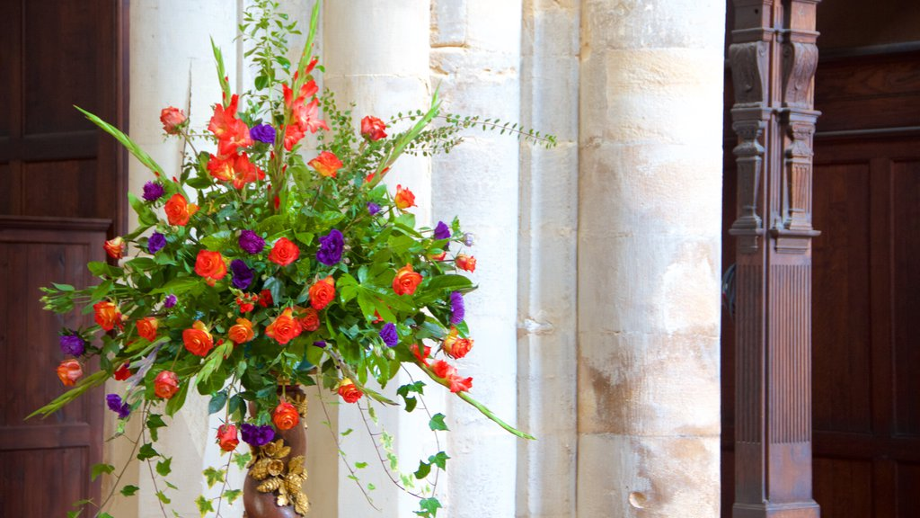 King\'s Lynn showing flowers and interior views