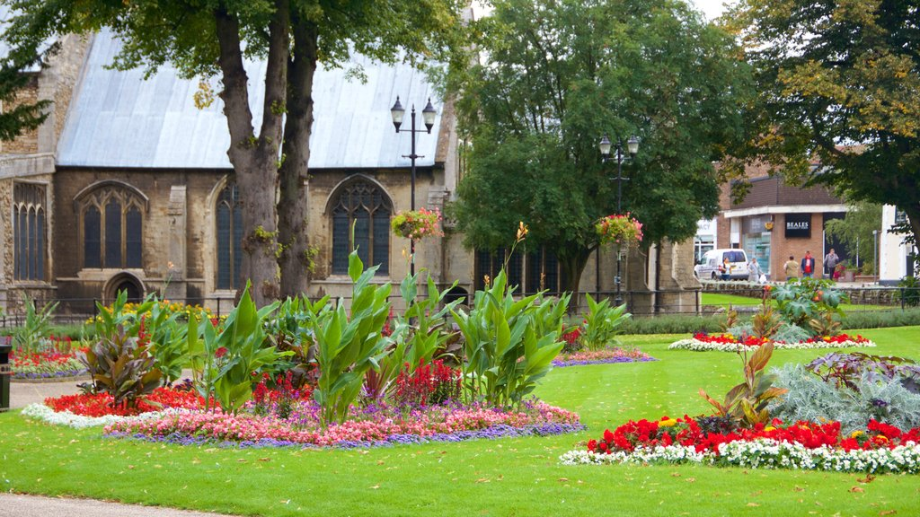 Wisbech featuring flowers and a garden