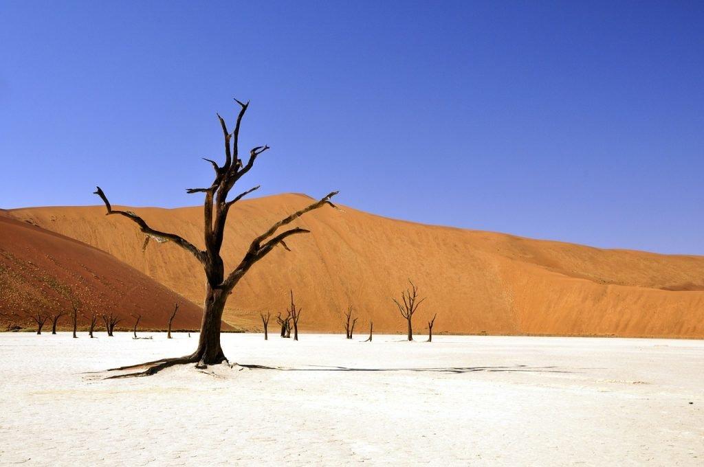 Deadvlei in der Namibwüste