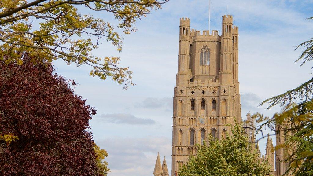 Catredral de Ely mostrando patrimonio de arquitectura, una iglesia o catedral y elementos del patrimonio