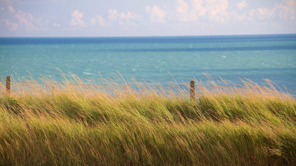 Brighton que incluye escenas tranquilas y vistas generales de la costa