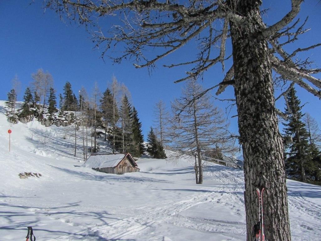 steiermark-ski-web-15-von-26