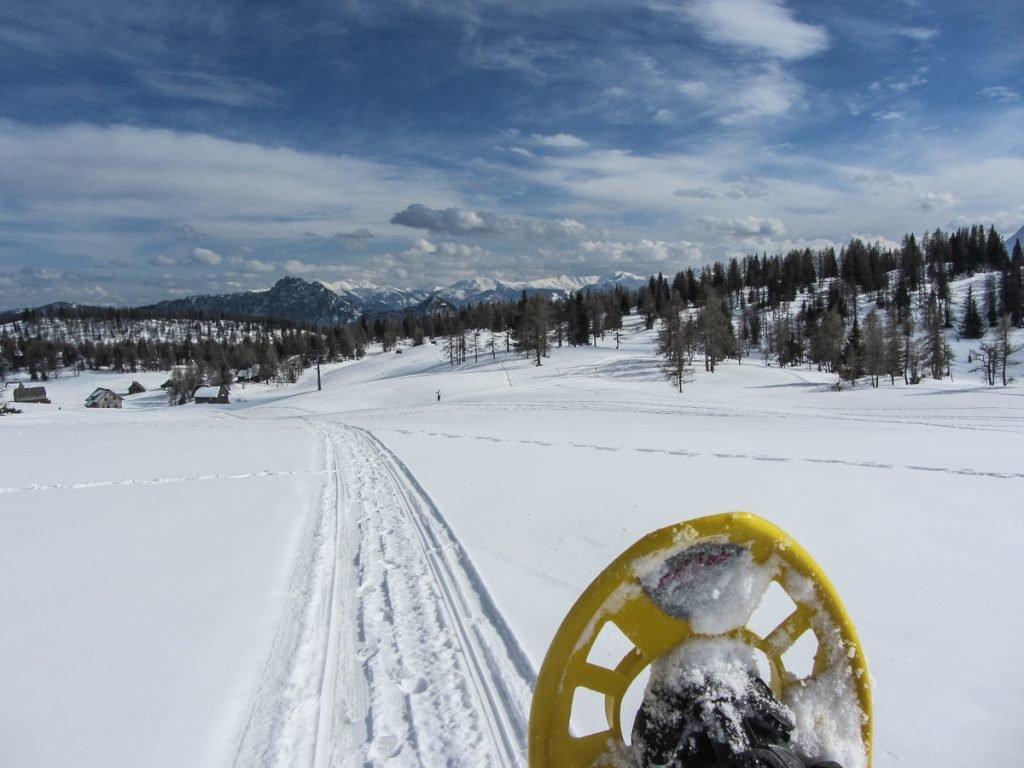 steiermark-ski-web-23-von-26