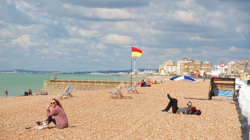 Brighton Beach which includes a pebble beach as well as a small group of people