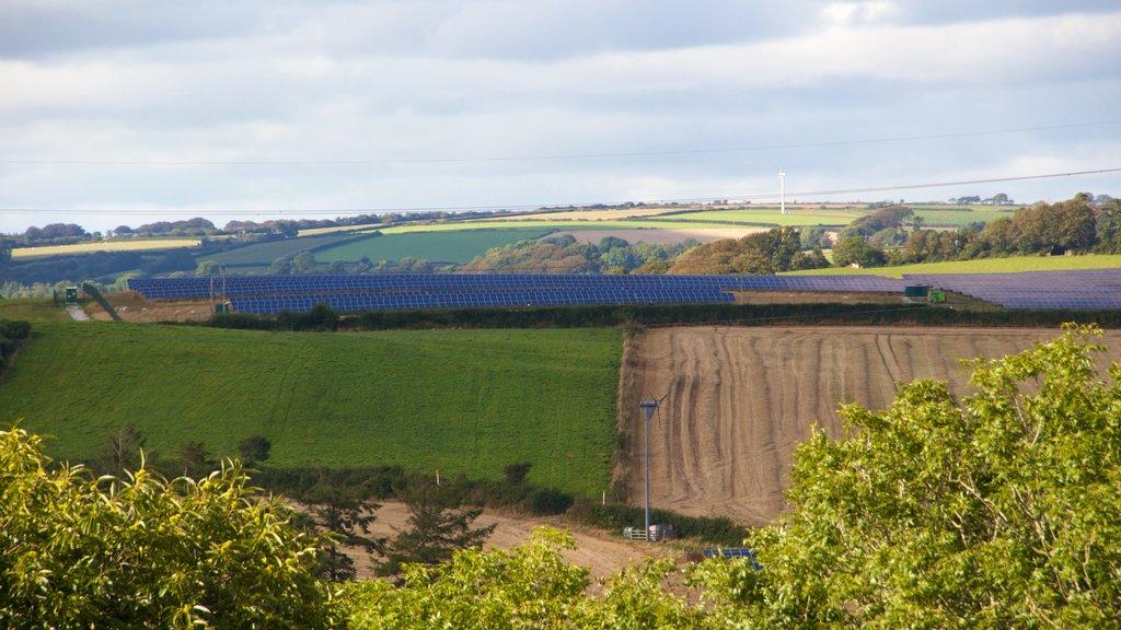 Cornwall que incluye vistas de paisajes