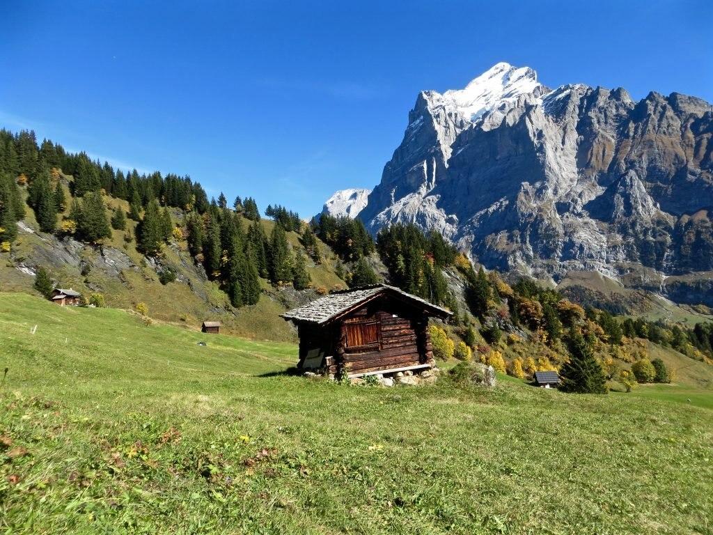 alpenidylle-in-grindelwald, Schweiz
