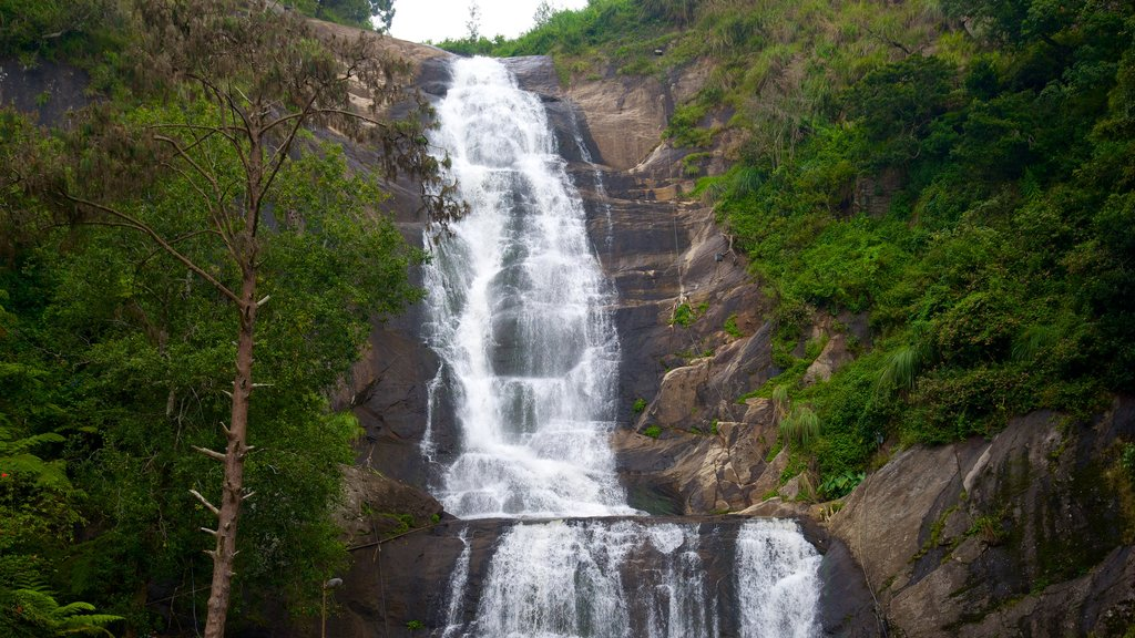 Silver Cascade showing a waterfall