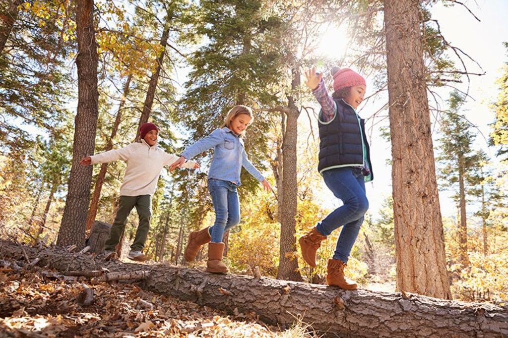 Kinder Wald Wandern Bayern Füssen