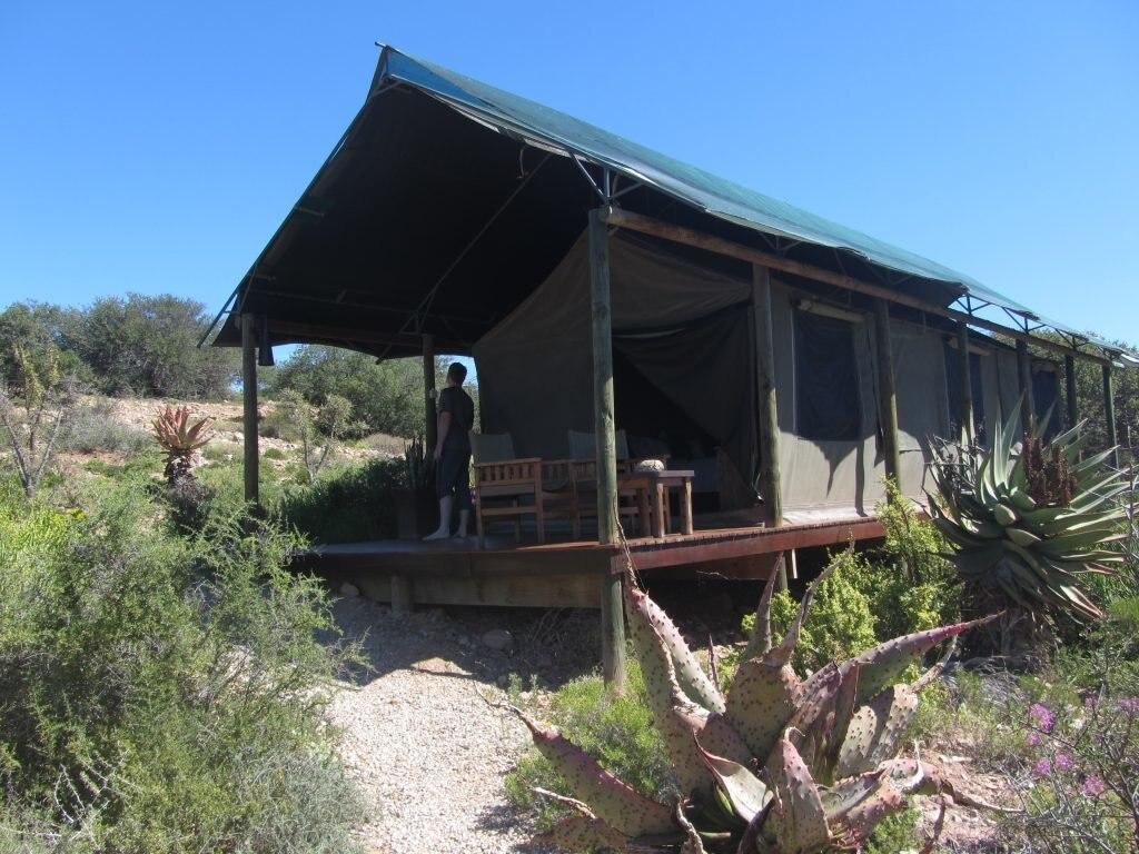 Ein Luxus-Wohnzelt auf Safari in Südafrika