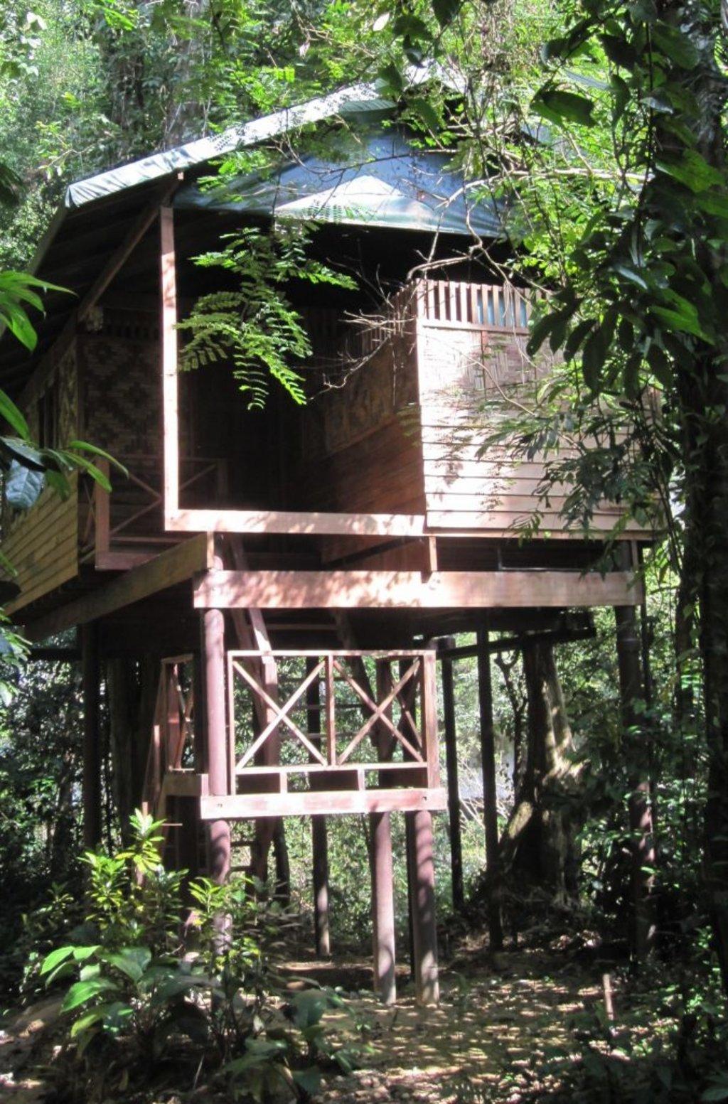 Ein Baumhaus in Thailand
