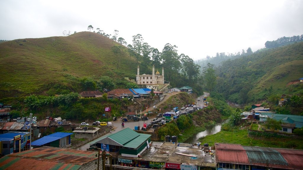 Munnar showing a small town or village