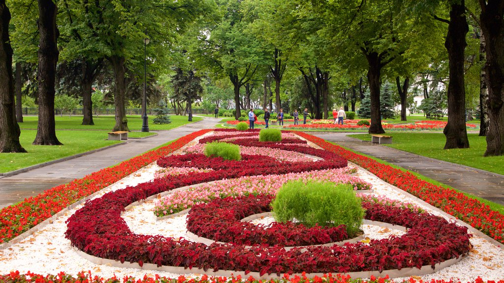 Moscow Kremlin showing a park and flowers