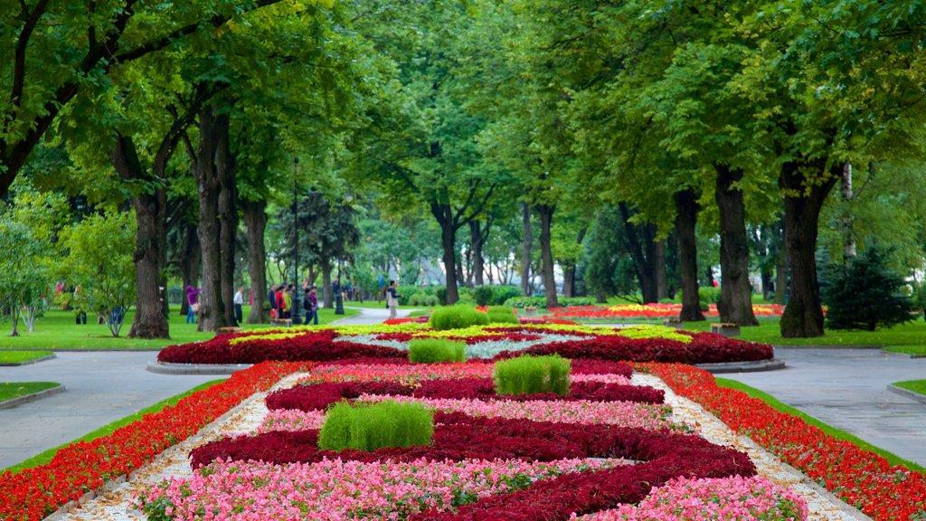 Kremlin de Moscú mostrando un parque y flores