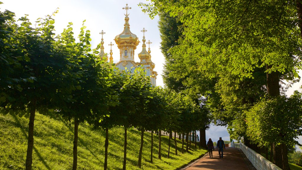Peterhof Palace and Garden which includes a park