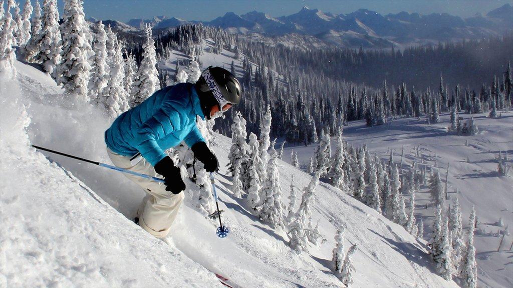 Montana mostrando esquiar en la nieve y nieve y también un hombre