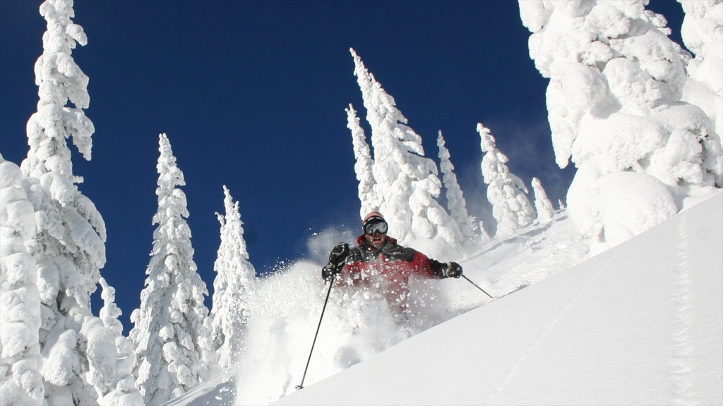 Montana which includes snow and snow skiing as well as an individual male
