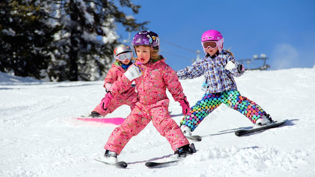 Montana showing snow skiing and snow as well as children