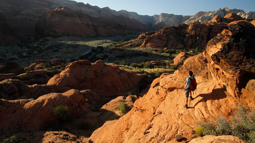 St. George featuring a gorge or canyon and hiking or walking as well as an individual male