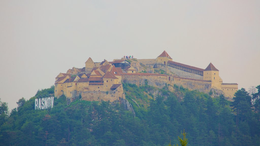 Rasnov Fortress showing a castle and signage