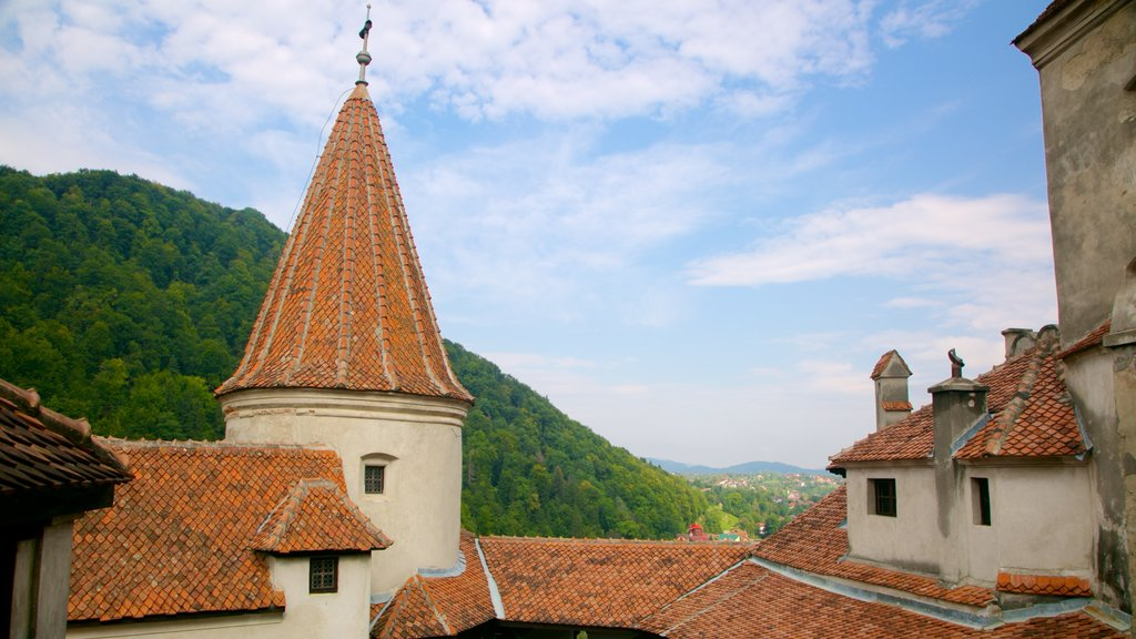 Bran Castle which includes chateau or palace