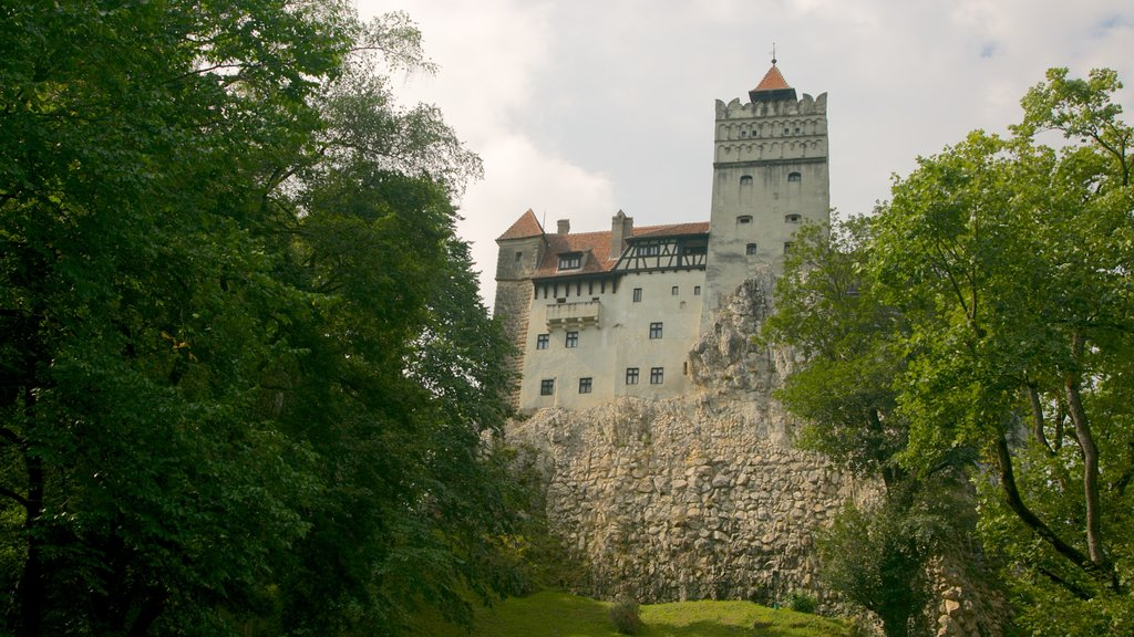 Bran Castle showing a castle and heritage architecture