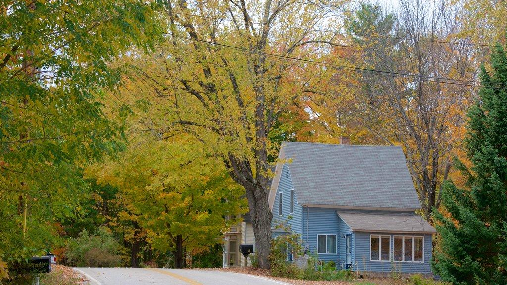 North Conway que incluye los colores del otoño y una casa