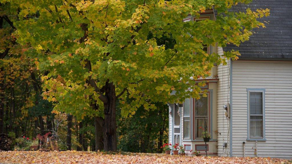 North Conway ofreciendo hojas de otoño y una casa