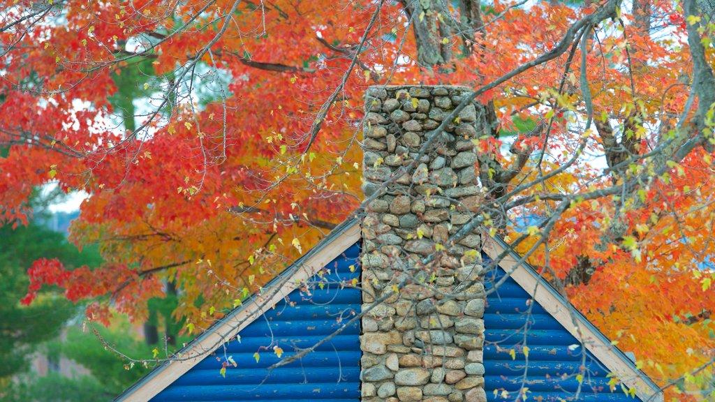 North Conway ofreciendo hojas de otoño