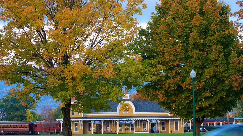 North Conway featuring autumn leaves and railway items