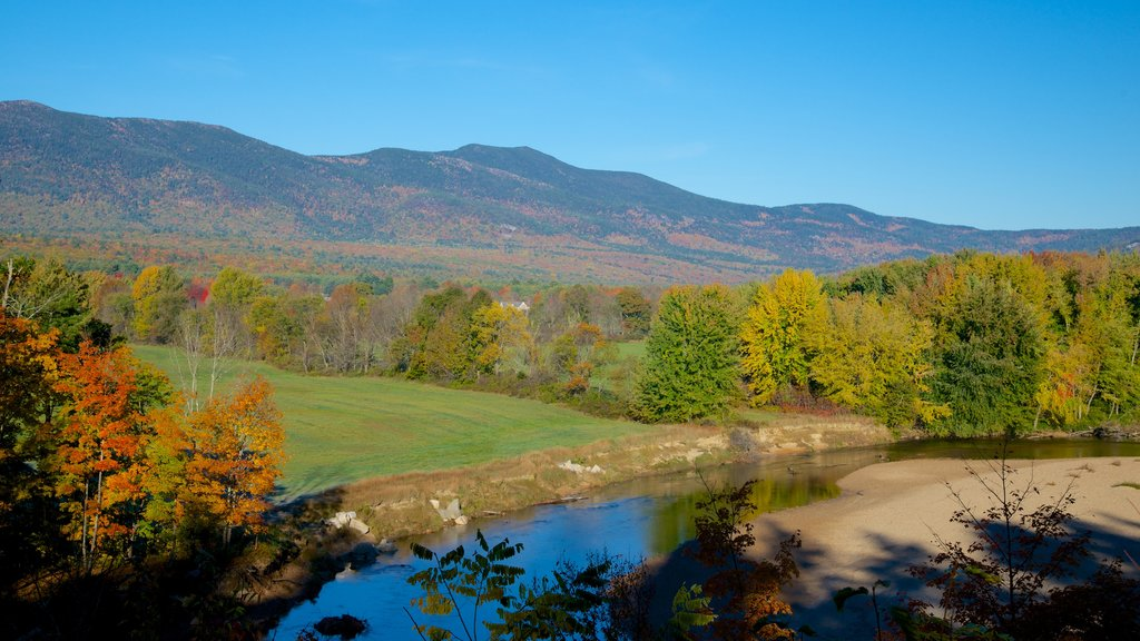 North Conway mostrando escenas tranquilas y los colores del otoño