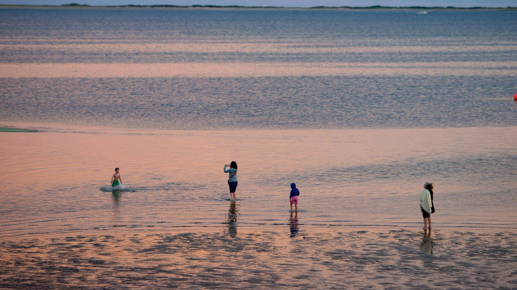 Provincetown showing general coastal views and a sunset as well as a family