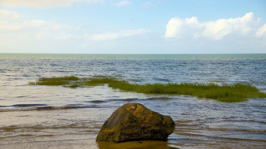 Brewster showing general coastal views