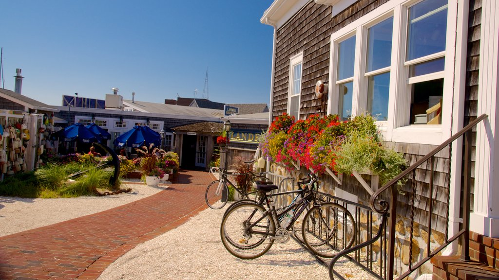 Woods Hole showing street scenes