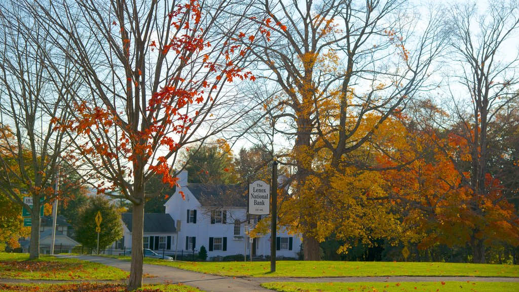 Lenox which includes a park and autumn leaves