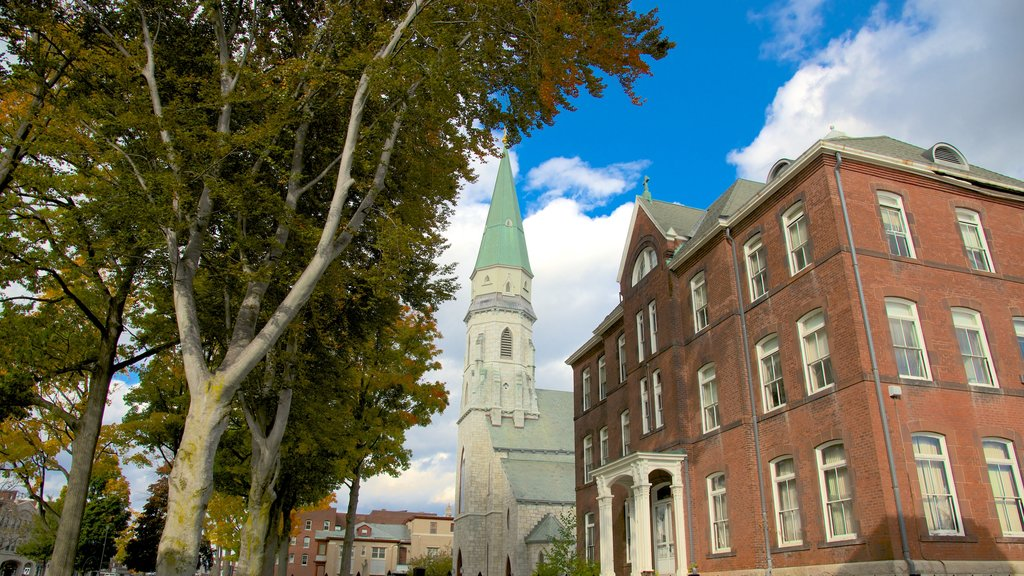 Pittsfield which includes a church or cathedral