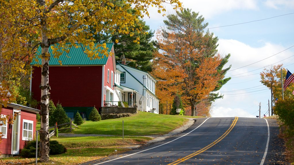 Sugar Hill featuring autumn leaves and a house