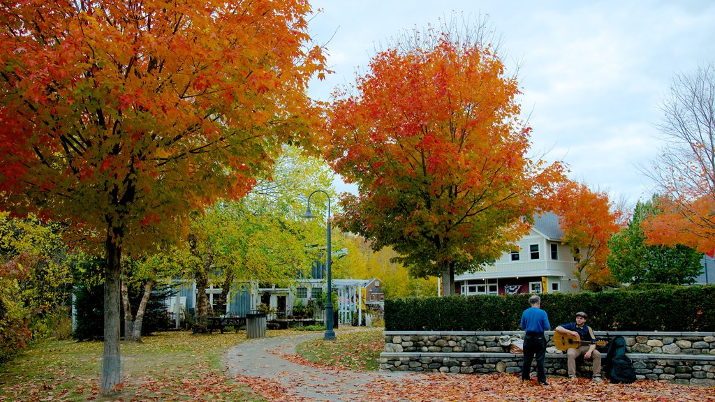 Peterborough showing fall colors and a garden as well as a small group of people