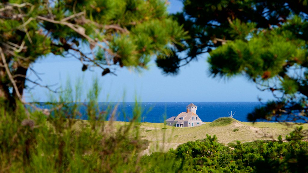 Cape Cod National Seashore showing general coastal views and a house