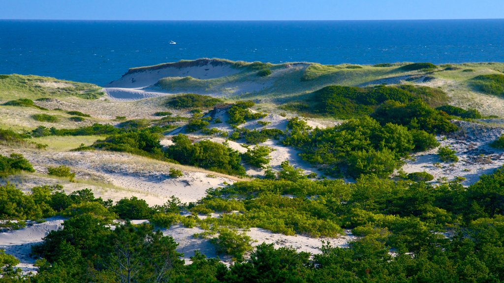 Cape Cod National Seashore showing general coastal views and tranquil scenes