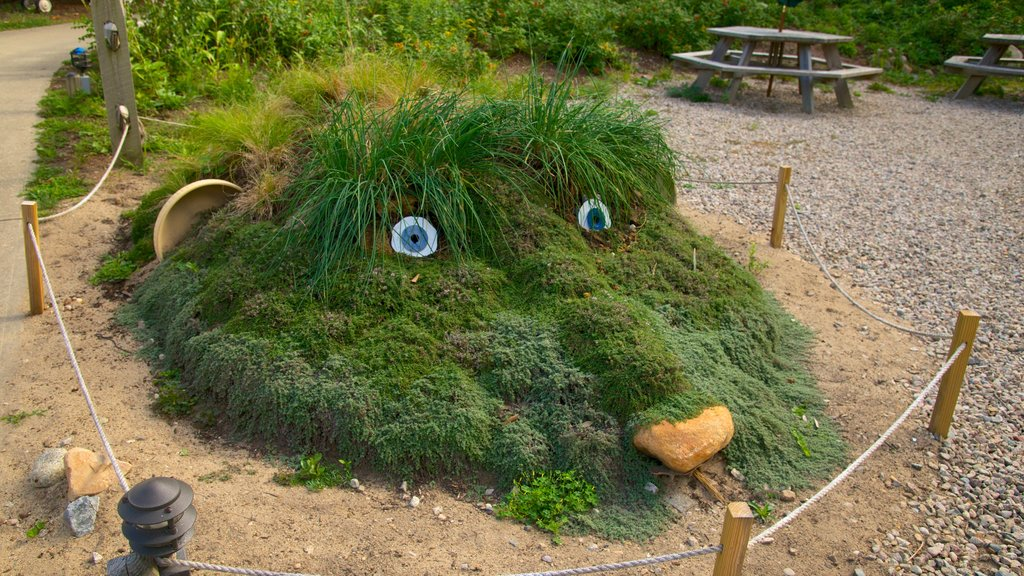 Cape Cod Museum of Natural History featuring outdoor art