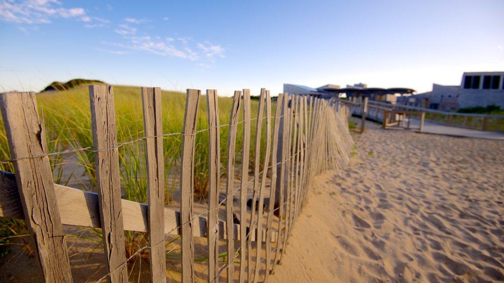 Herring Cove Beach showing a sandy beach