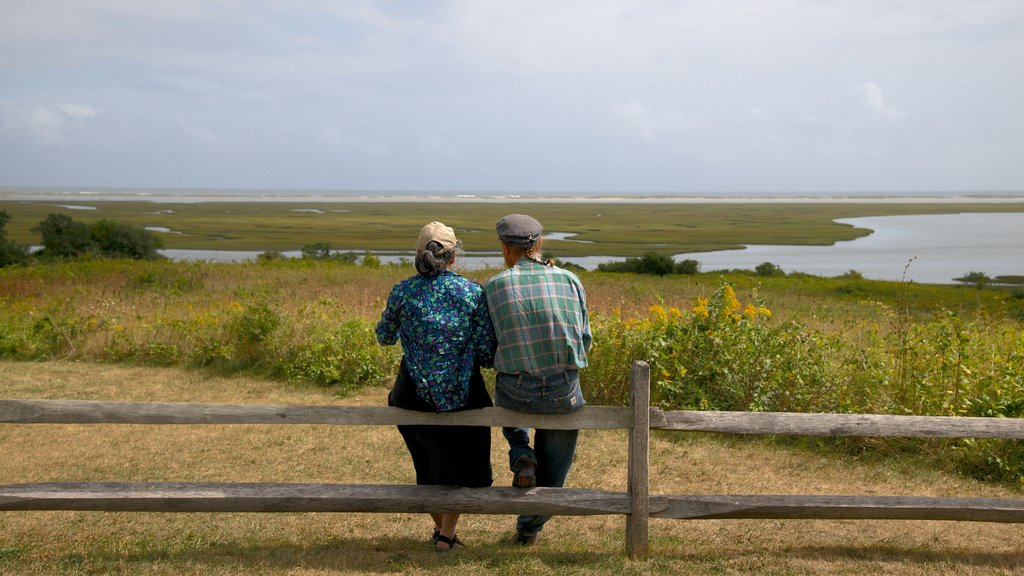 Salt Pond Visitor Center which includes tranquil scenes and a lake or waterhole as well as a couple