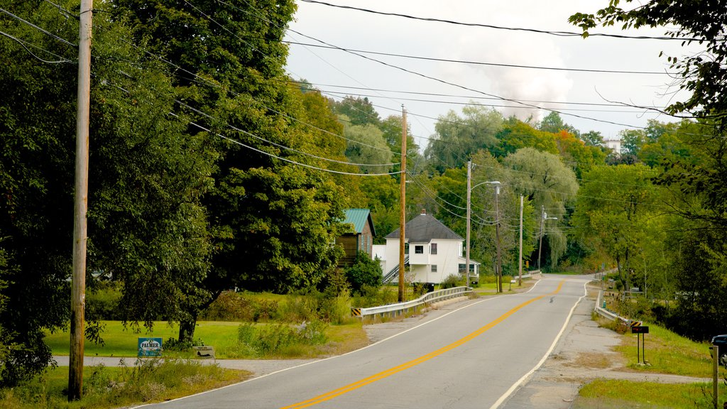 Maine showing street scenes and a house