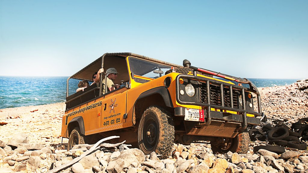 Curazao mostrando una playa de guijarros, turismo en vehículo y manejo de vehículo de doble tracción