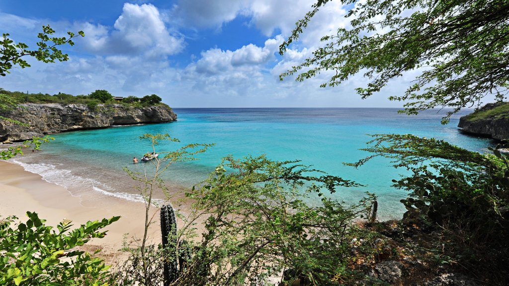 Curazao mostrando costa escarpada y una playa